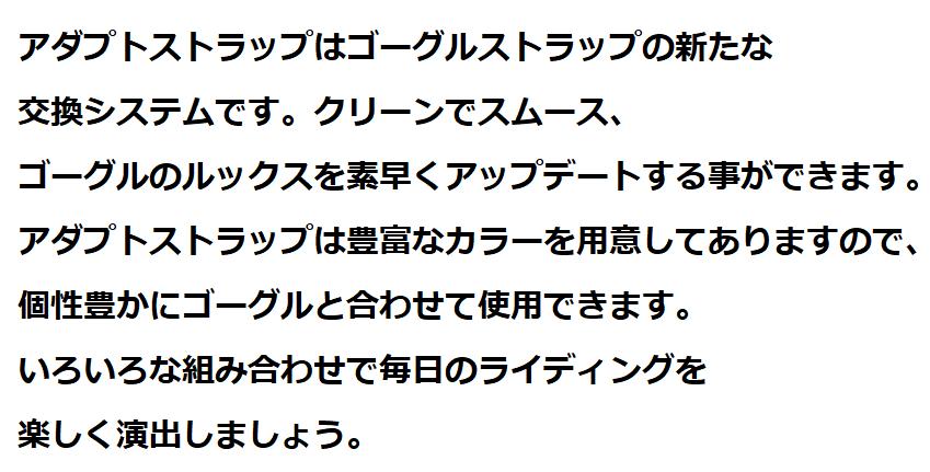 ジロ ゴーグル・メソッド(METHOD)スペック評価13