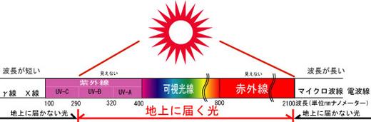 日焼けの原因2